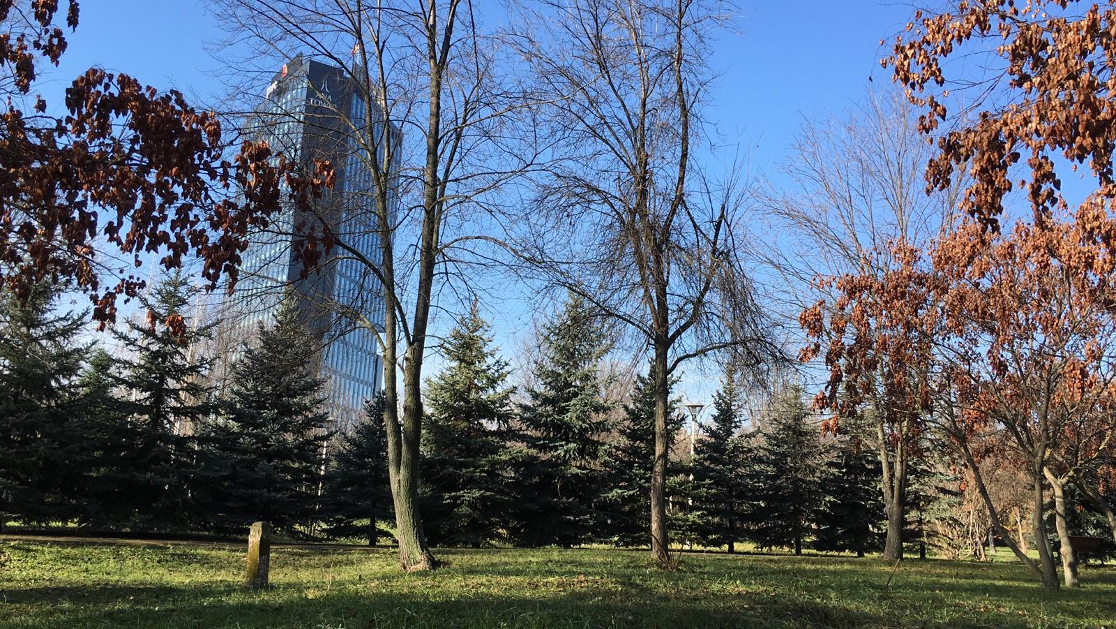 Un nou parc va fi redat locuitorilor Sectorului 1