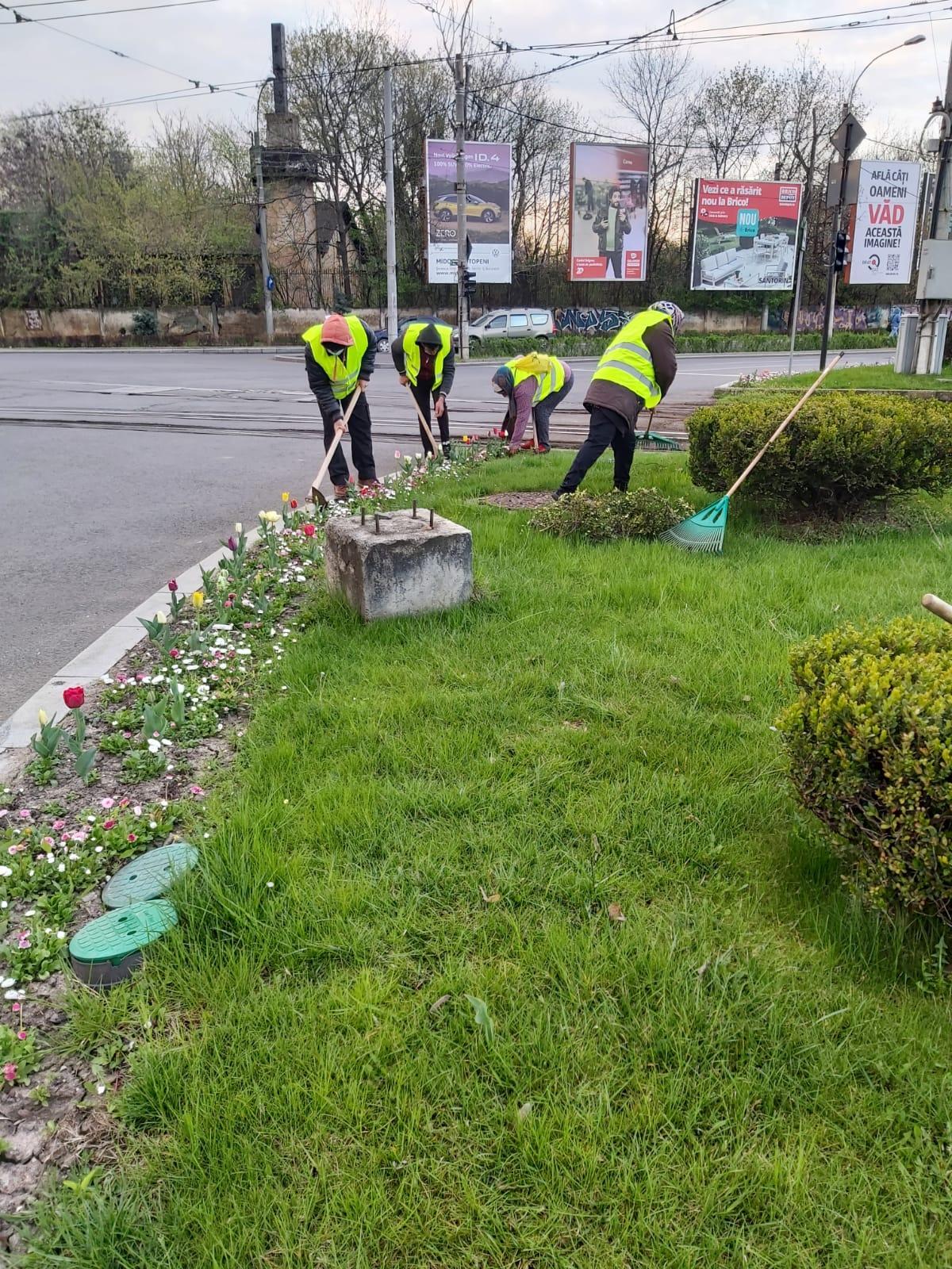 Înfrumusețăm parcurile și spațiile verzi din Sectorul 1